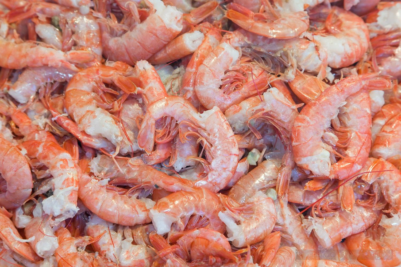 Uncooked Shrimp